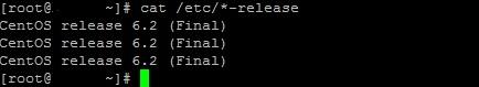 2 Cum afli ce versiune de Linux ruleaza pe serverul pe care esti conectat