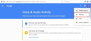google_voice2